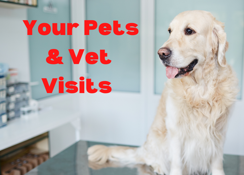 New Year's Resolution 2021 – Healthy, Happy Pets!